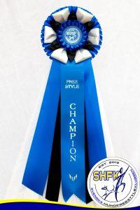 FS Champion