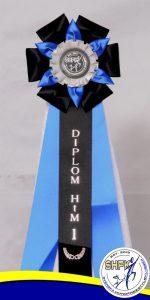 Diplom HtM 1
