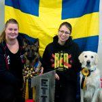 Svenska Mästarna! Rolands Håriga